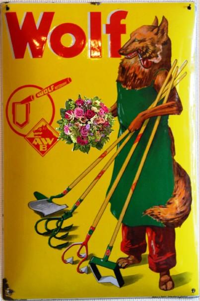 wolf-mit-blumenstrauss.JPG
