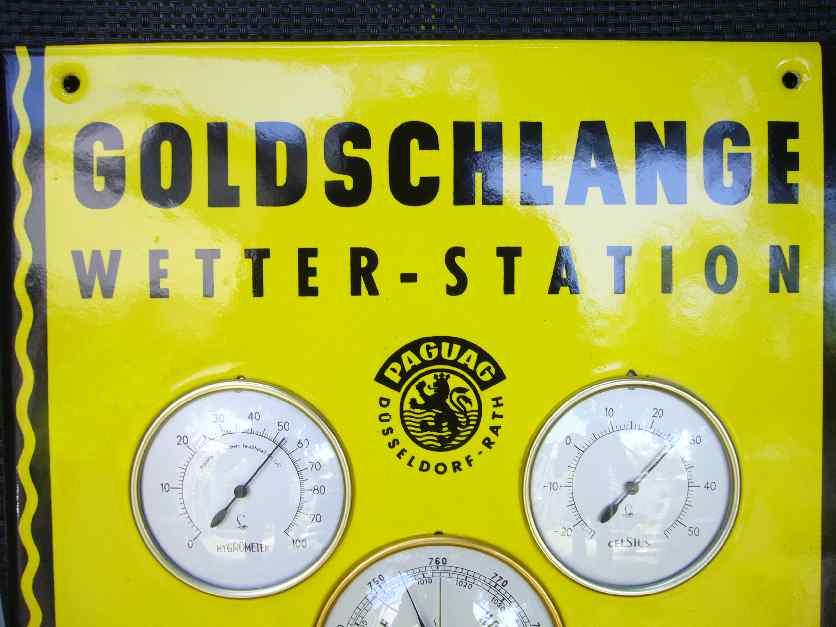 Goldschlange 4 003